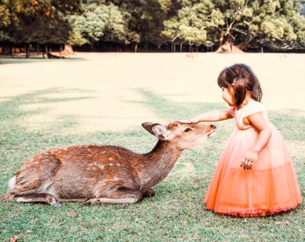 あなたも投稿してみて!海外の写真家も参加する「#_thisisjapan」で日本の魅力再発見/Post!Post!Post! Rediscover the beauties of Japan through【#_thisisjapan】along with notable photographers from around the world