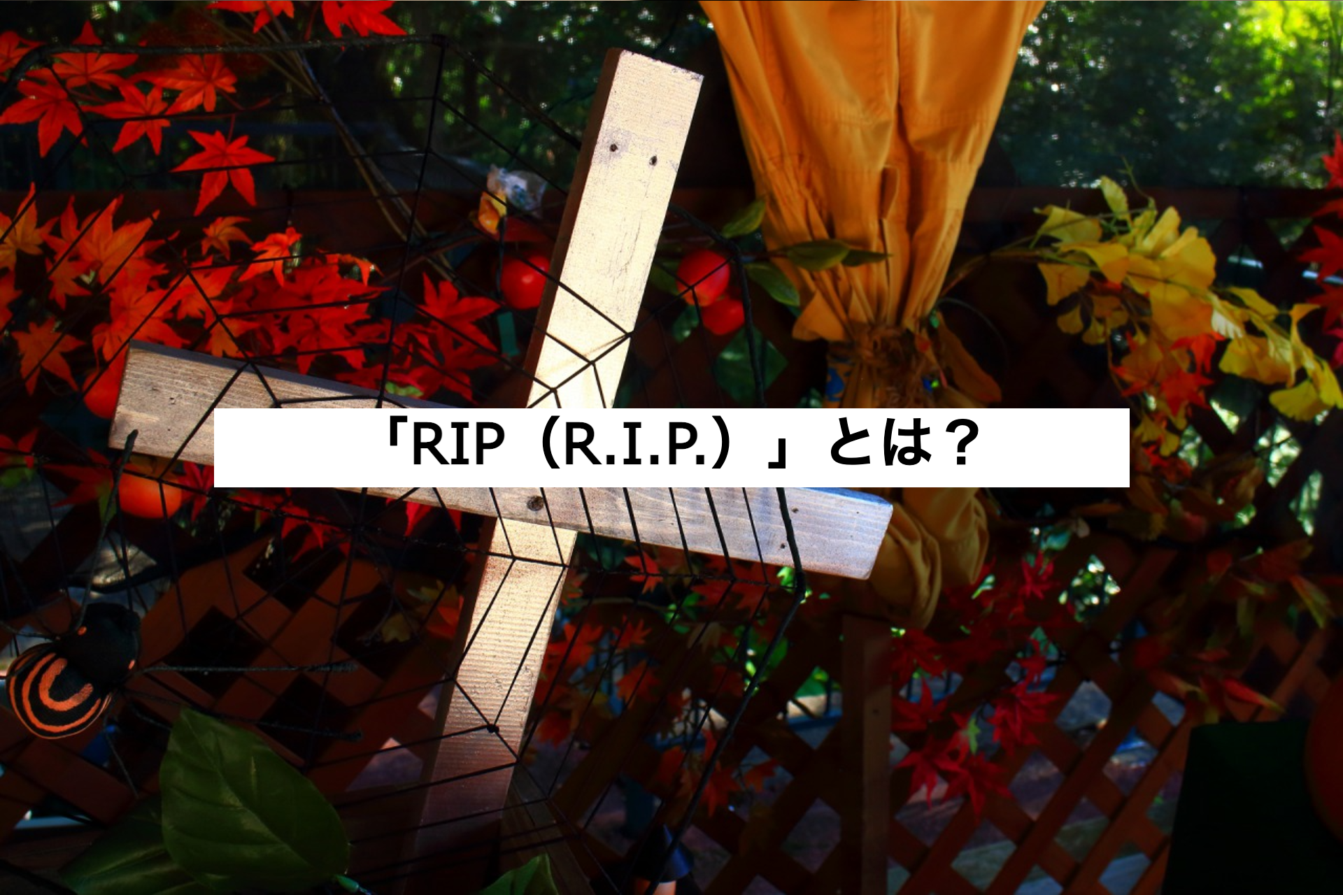 「RIP(R.I.P.)」とは?本来の意味とネット上での使い方例