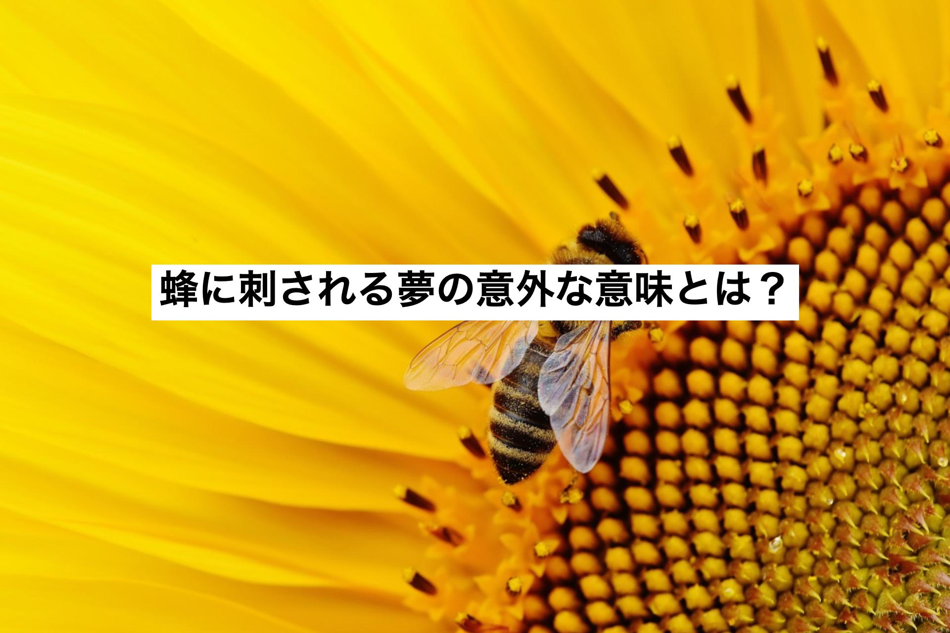 蜂に刺される夢の意外な意味とは?蜂の種類や刺された部位による暗示を解説