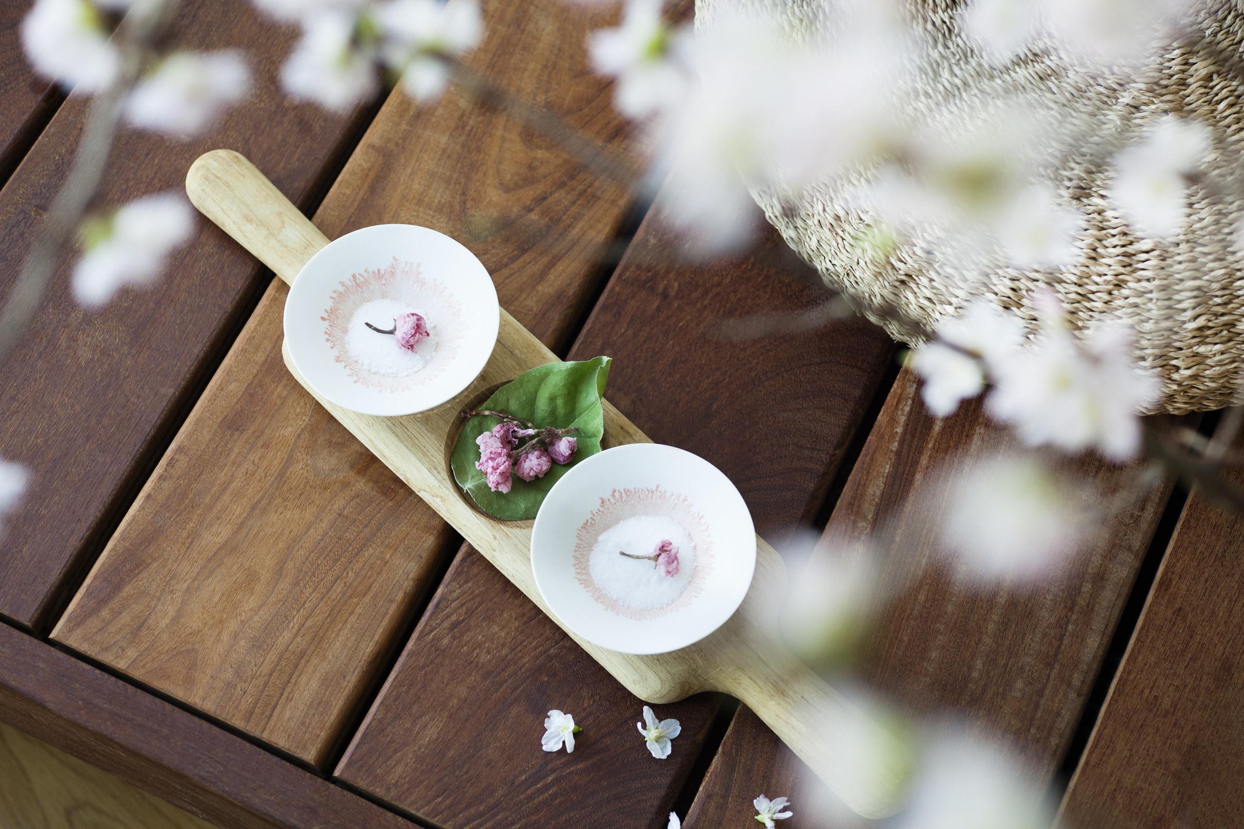 お花見シーズンに立ち寄りたい! TOKYO厳選カフェ&レストラン