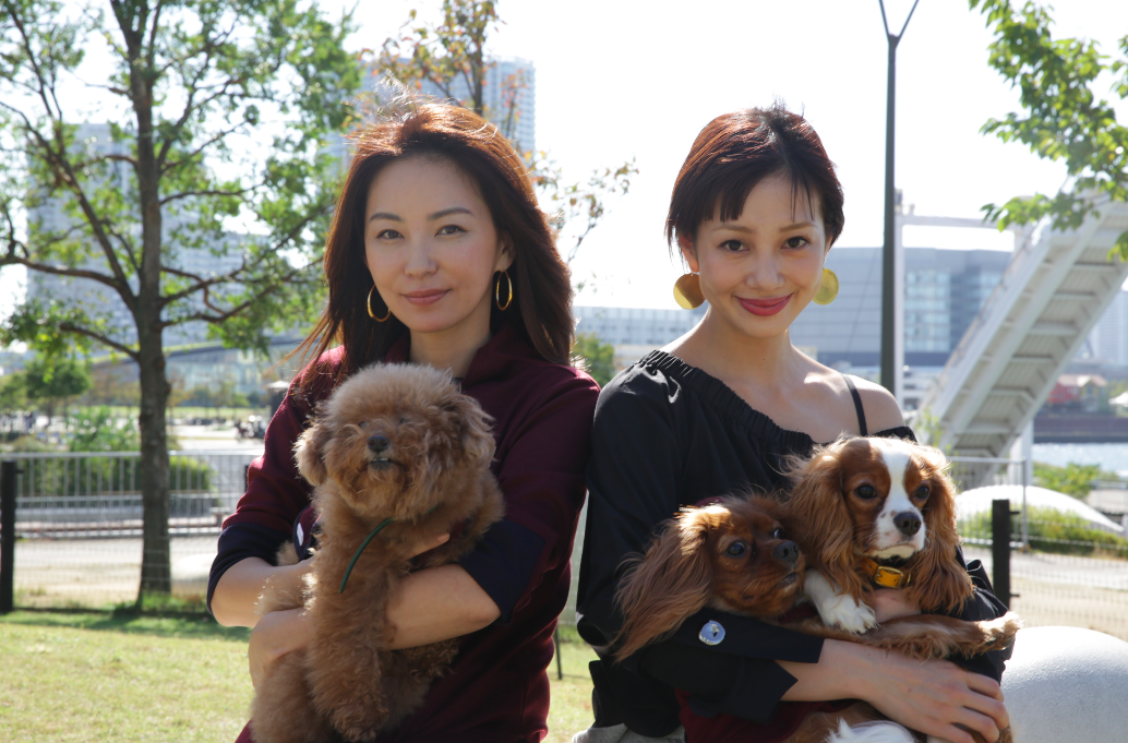 【真山景子&木下ココ】愛犬を連れて「開放感がイイ」と話題のドッグカフェへ!